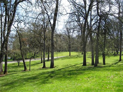Bush-Pasture-Park